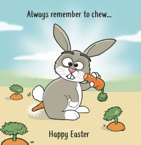 CS11  Always Remember To Chew Funny Easter Card